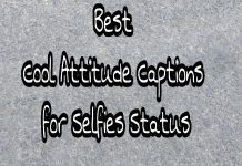 Best Cool Attitude captions for Selfies Status