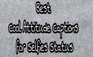 Best Cool Attitude captions for Selfies Status  - Best Cool Attitude captions for Selfies Status 356x220 - New Home