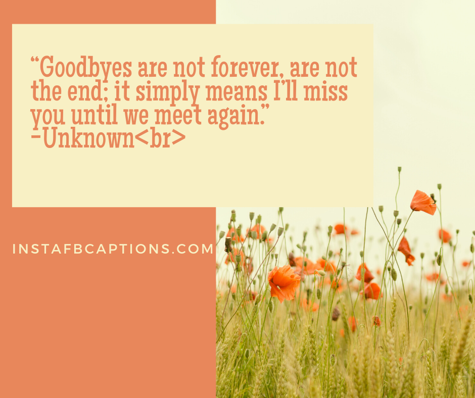 Farewell Quotes for Colleagues  -    Goodbyes are not forever are not the end it simply means I   ll miss you until we meet again - 130+ Farewell Captions (College Seniors Students Funny)
