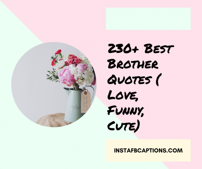 230 Best Brother Quotes Love Funny Cute