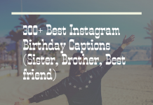 300 Best Instagram Birthday Captions Sister Brother Best Friend