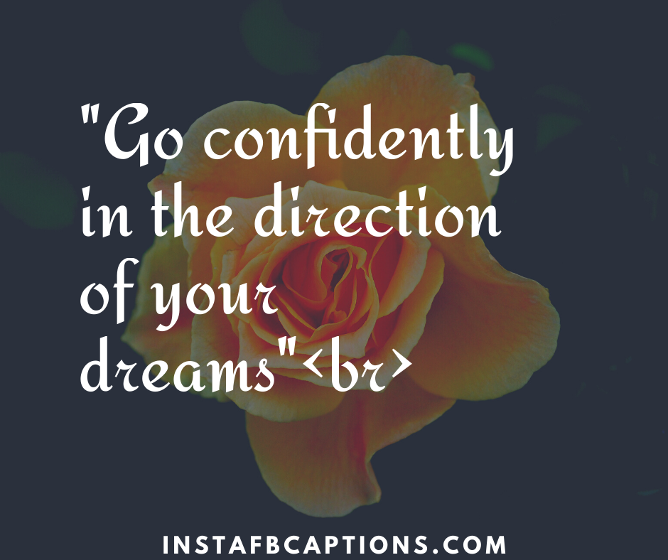 College Farewell quotes  - Go confidently in the direction of your dreamsbr - 130+ FAREWELL Instagram Captions for Friends, Seniors, Colleagues & Students 2021
