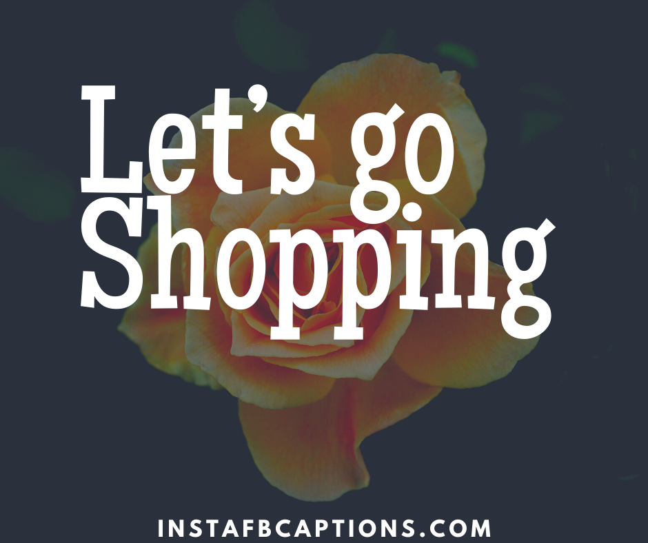 Funny Instagram Shopping captions  - Let   s go Shopping - Shopping Instagram Captions (Online Fashion Grocery quotes )