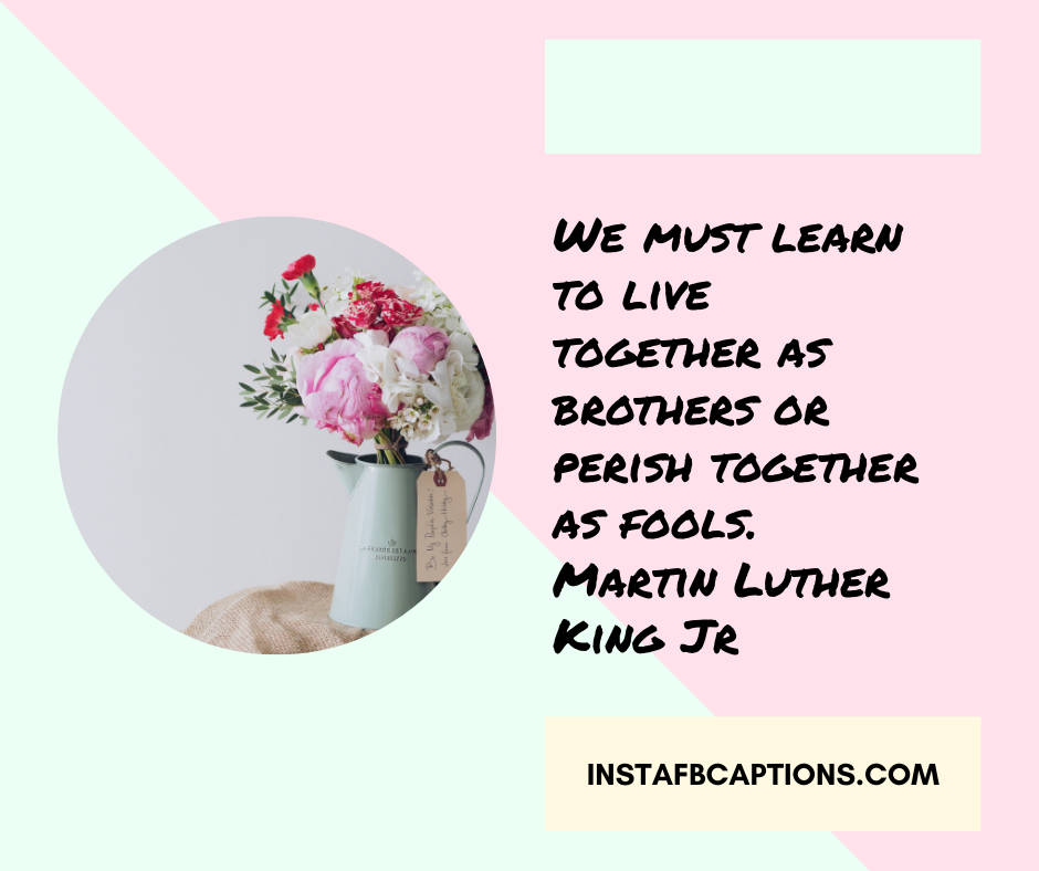 Short Brother Quotes   - We must learn to live together as brothers or perish together as fools - 230+ Best Brother Quotes ( Love, Funny, Cute)