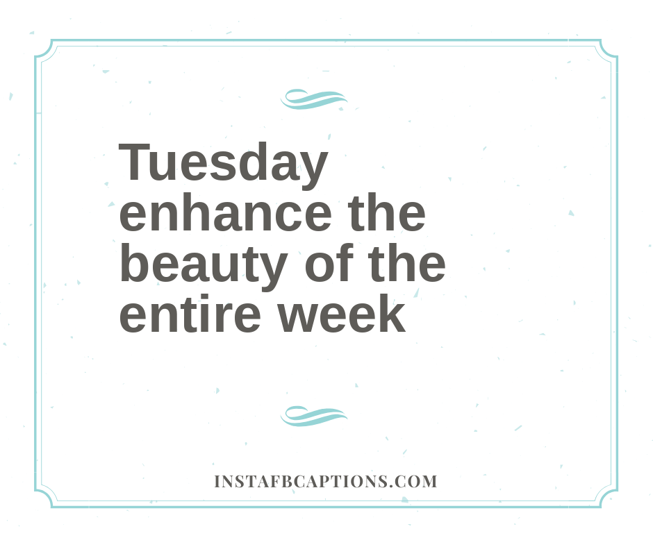 Tuesday Selfie Quotes for Instagram  - Tuesday enhance the beauty of the entire week - 50+ Tuesday Instagram Captions (Best Perfect Happy Beautiful Selfie Quotes)