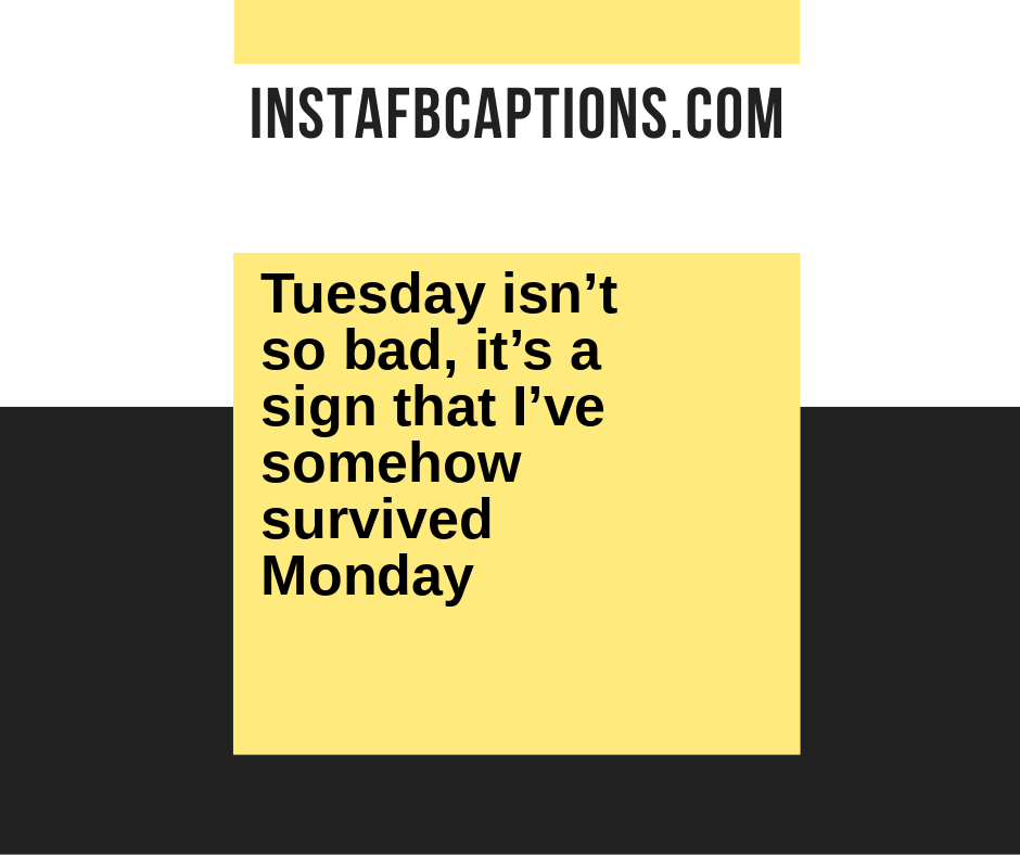 Perfect Tuesday Captions  - Tuesday isn   t so bad it   s a sign that I   ve somehow survived Monday - 50+ Tuesday Instagram Captions (Best Perfect Happy Beautiful Selfie Quotes)