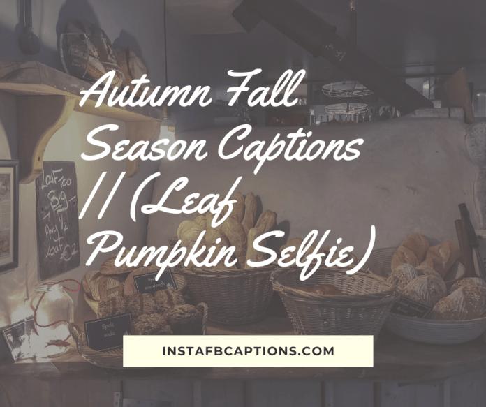 Autumn Fall Season Captions || (leaf Pumpkin Selfie)