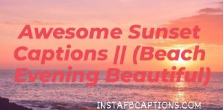 Awsome Sunset Captions (beach Evening Beautiful)