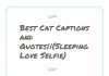 Best Cat Captions And Quotes||(sleeping Love Selfie)
