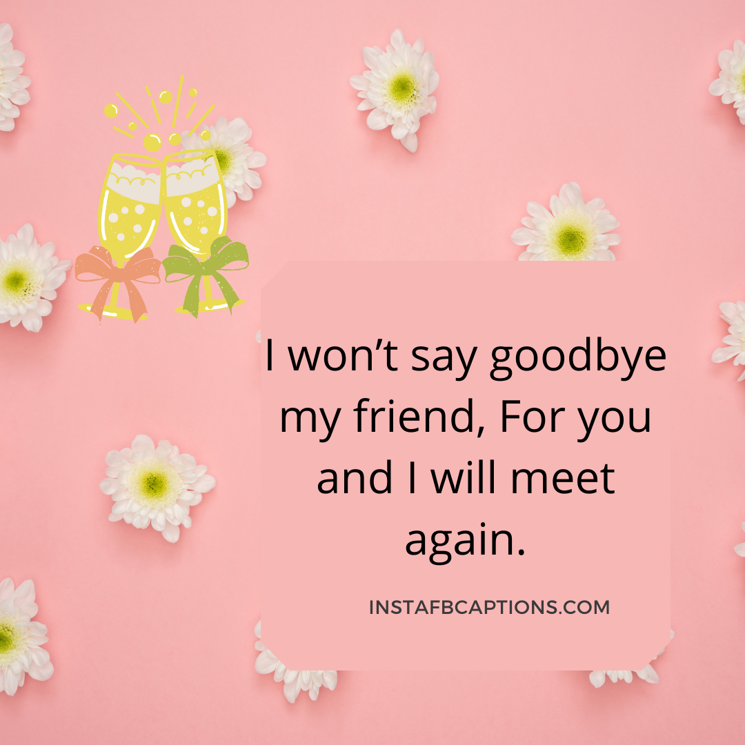 I Won't Say Goodbye My Friend, For You And I Will Meet Again. (1)  - I won   t say goodbye my friend For you and I will meet again - Vidaai Captions For Instagram || (Sad Funny Bride)