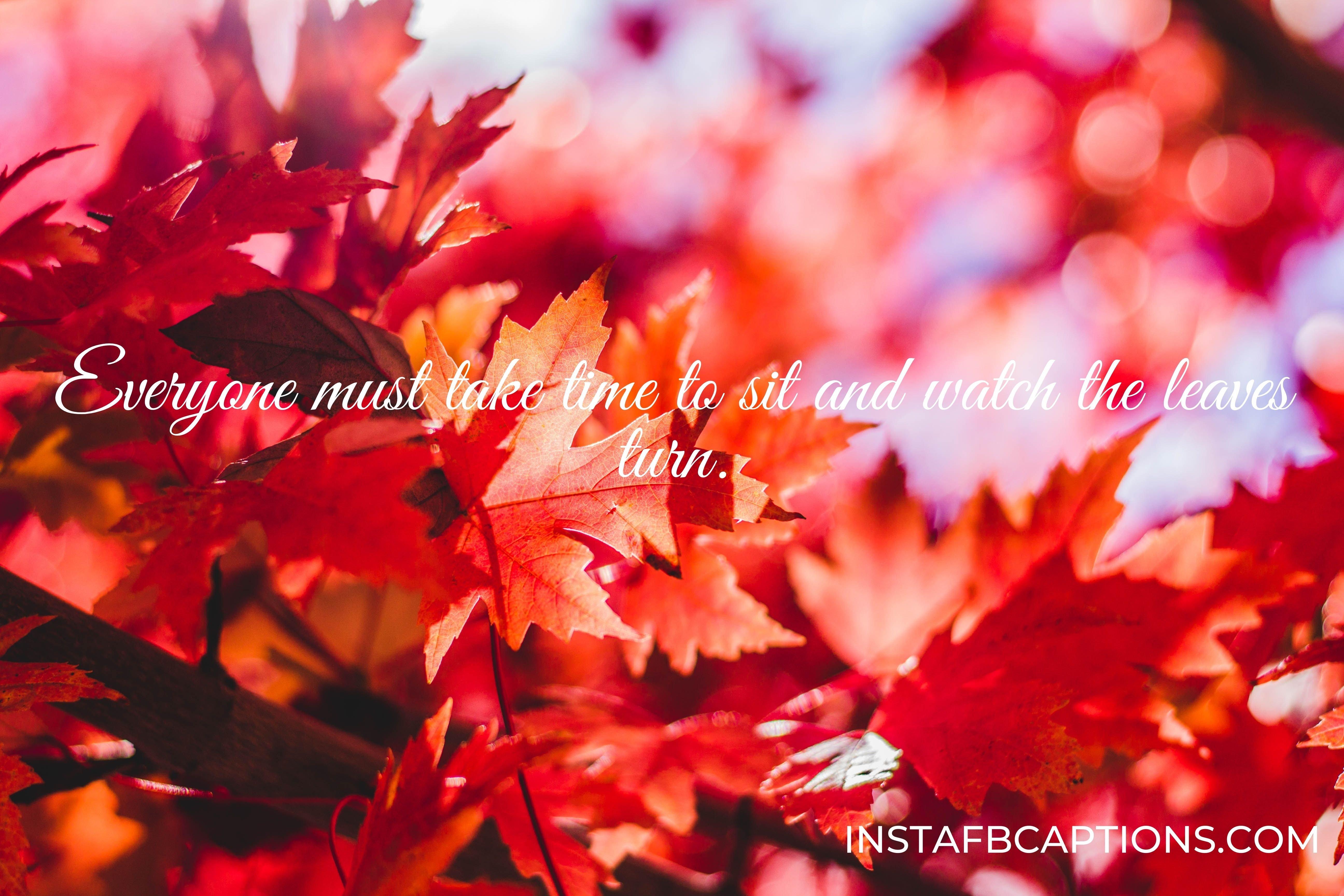 fall leaf captions  - INSTAFBCAPTIONS - Autumn Fall Season Captions || (Leaf Pumpkin Selfie)