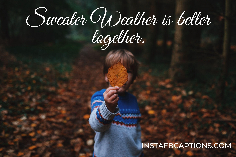 instagram sweater captions  - Sweater Weather is better together - Autumn Fall Season Captions || (Leaf Pumpkin Selfie)