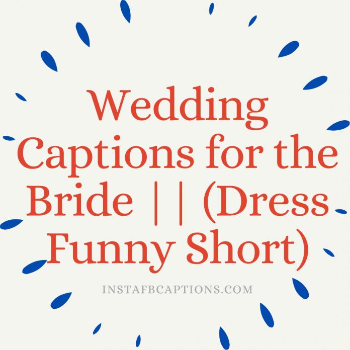 Wedding Captions For The Bride (dress Funny Short)