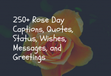 250+ Rose Day Captions, Quotes, Status, Wishes, Messages, And Greetings