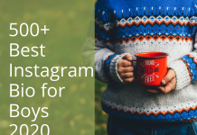 500+ Best Instagram Bio For Boys 2020