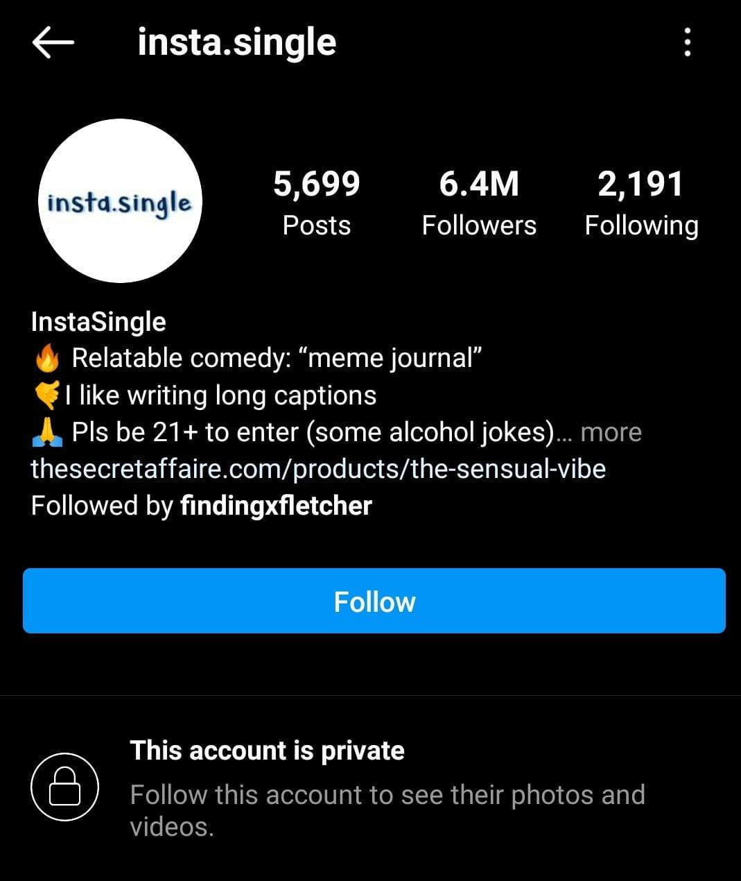 @insta.single  -  INSTA - 21 Top MEME INSTAGRAM ACCOUNTS 2021 – Funny & Epic Memes Daily
