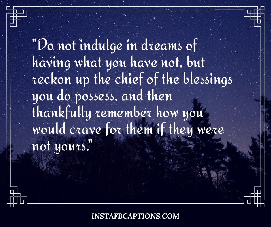 December Captions  - Do not indulge in dreams of having what you have not but reckon up the chief of the blessings you do possess and then thankfully remember how you would crave for them if they were not yours - December Captions, Quotes, and Sayings || (Winter Calendar Christmas)