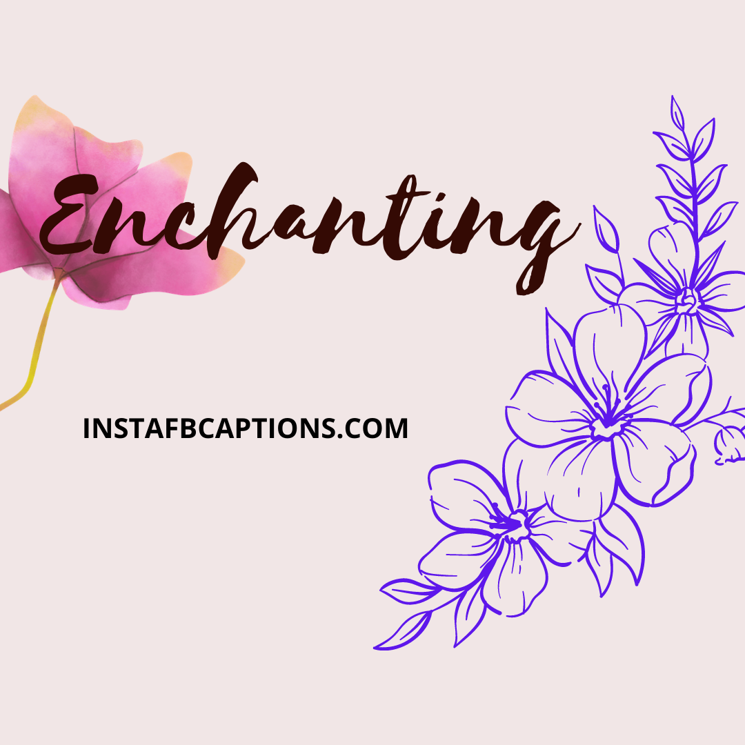 Enchanti  - Enchanting - 200+ COMMENTS For COUPLE PICS on Instagram  2021