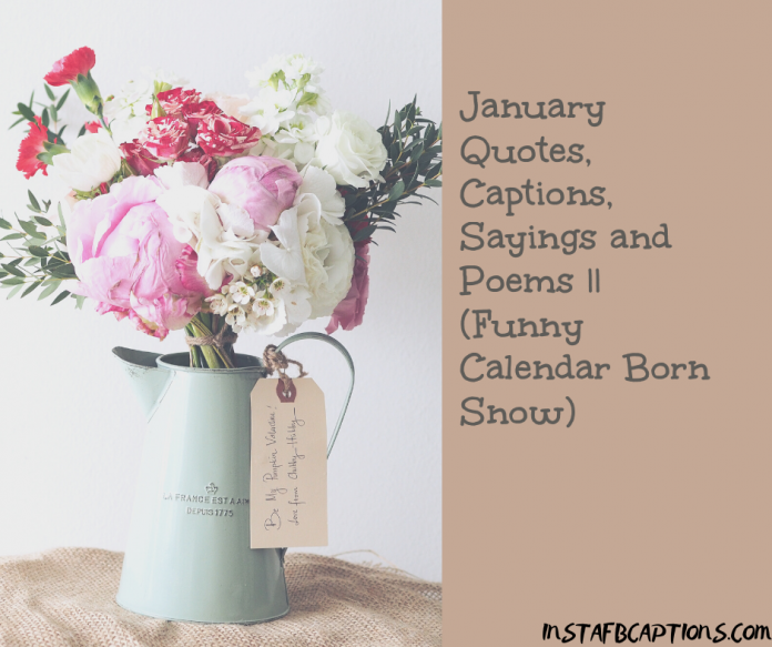 January Quotes Captions Sayings And Poems Funny Calendar Born Snow