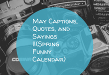 May Captions Quotes And Sayings Spring Funny Calendar
