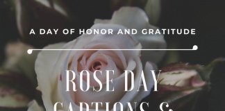 Rose Day Captions & Quotes