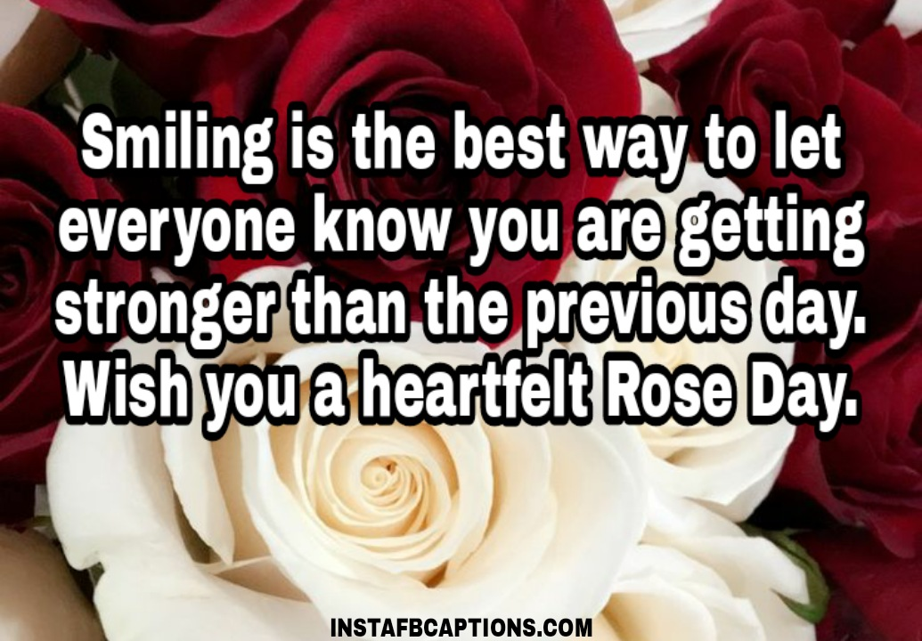 Rose Day Quotes For Cancer Patients  - Rose Day Quotes for Cancer Patients - 250+ ROSE DAY Instagram Captions & Quotes 2021