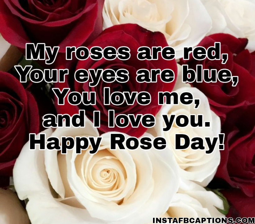 Rose Day Quotes For Husband  - Rose Day Quotes for Husband - 250+ ROSE DAY Instagram Captions & Quotes 2021