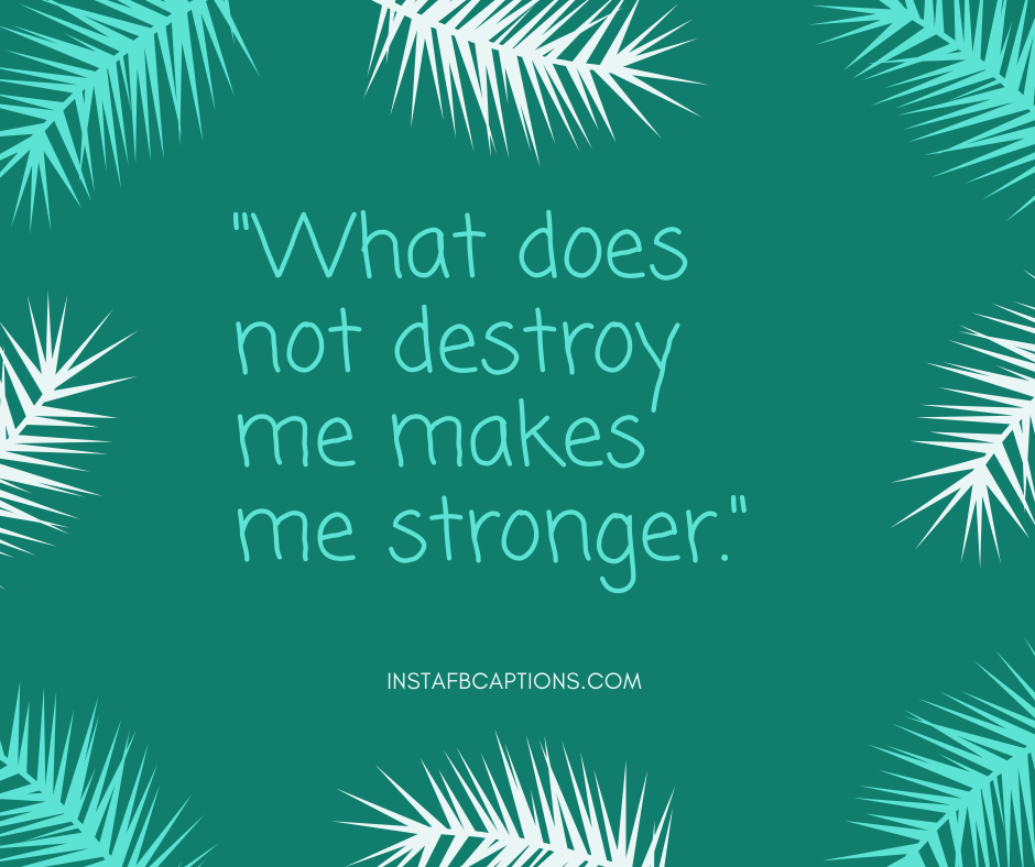 December 1st Quotes  - What does not destroy me makes me stronger - December Captions, Quotes, and Sayings || (Winter Calendar Christmas)