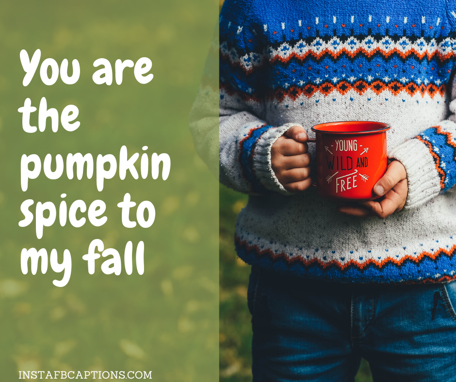 Happy November Quotes  - You are the pumpkin spice to my fall - NOVEMBER Instagram Captions, Quotes and Sayings 2021