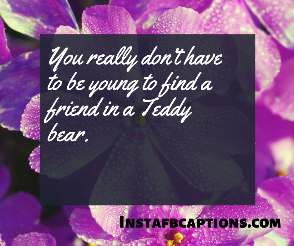Best Teddy Day Teddy Captions  - Best Teddy Day Teddy Captions - 250+ TEDDY DAY Instagram Captions & Quotes 2021