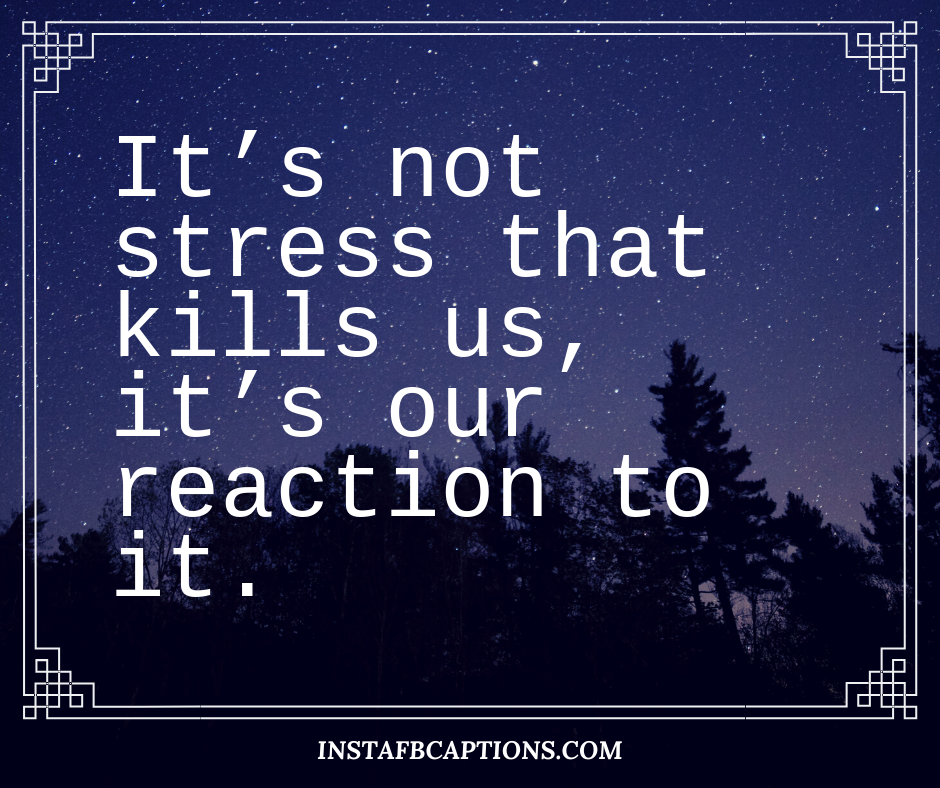 Feeling Stressed Quotes  - Feeling Stressed Quotes - 200+ Stress Relief Instagram Captions for Chilling & Relaxing in 2021