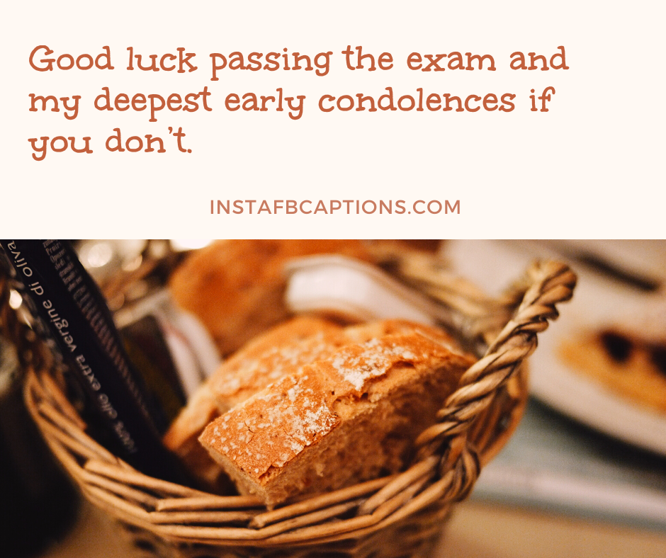 Funny Exam Captions For Instagram  - Funny Exam Captions for Instagram - 1000+ FUNNY Instagram Captions 2021