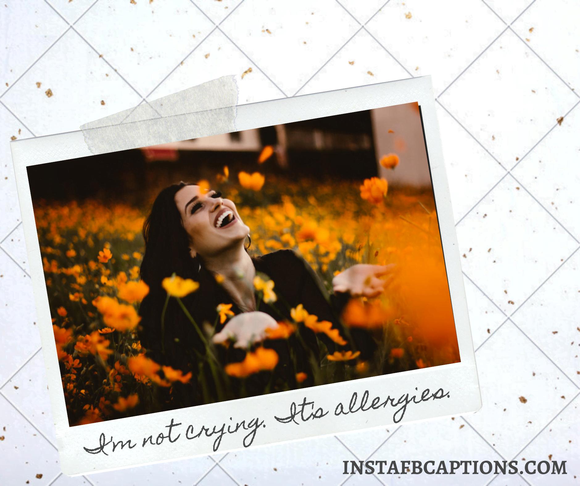 Funny Spring Captions  - Funny Spring Captions - 150+ Best SPRING Instagram Captions 2021