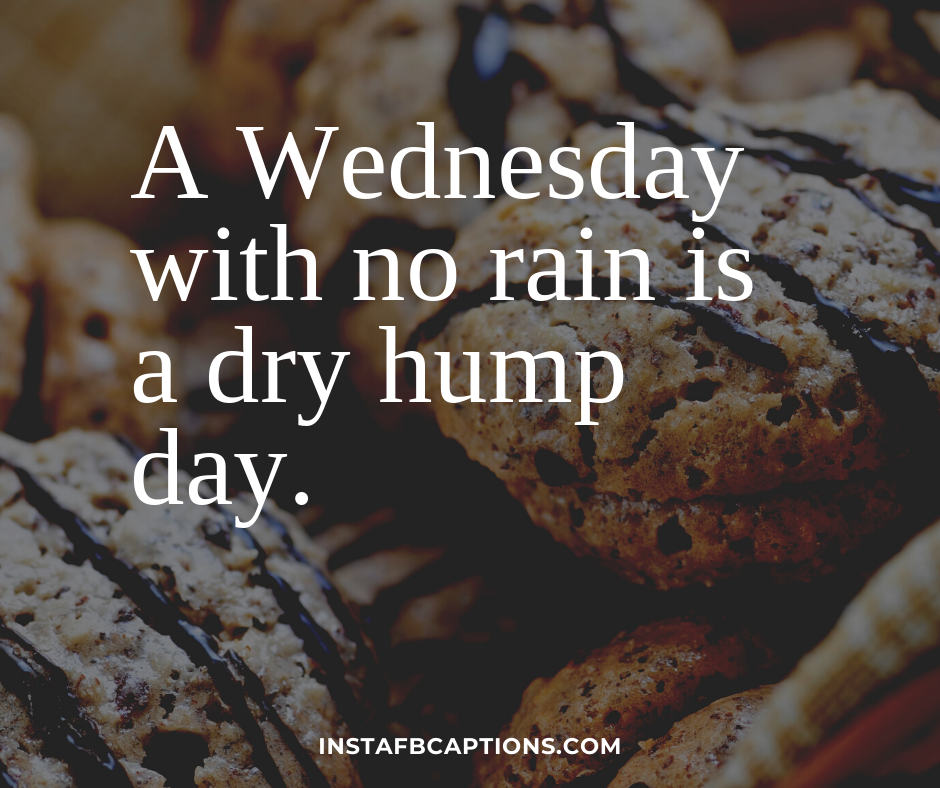 Funny Wednesday Captions  - Funny Wednesday Captions - 100+ WEDNESDAY Instagram Captions 2021