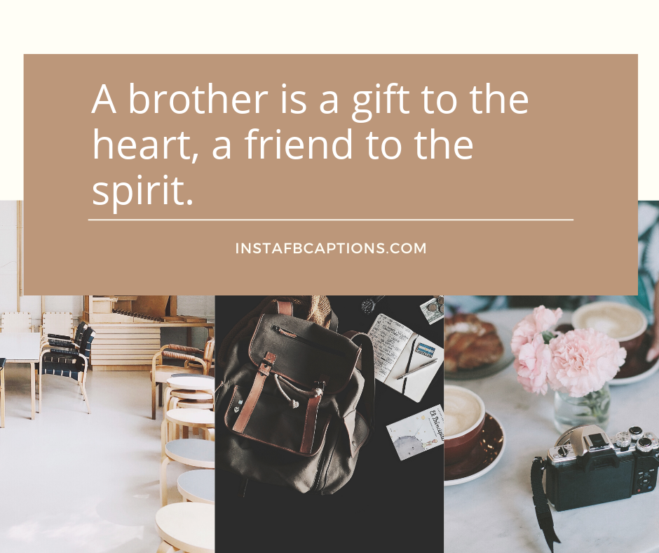 Short Brother Captions  - Short Brother Captions - 230+ Funny BROTHER Instagram Captions 2021