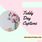 Teddy Day 2021 Captions, Quotes, Messages, Wishes & Greetings