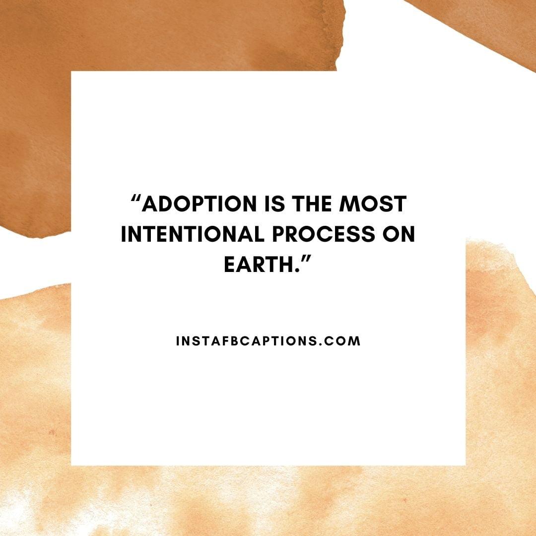 Short Adoption Captions  - Short Adoption Captions - 97+ Adoption Captions & Quotes to Encourage you in 2021
