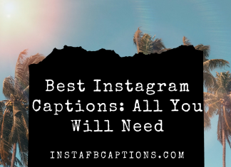 Best Instagram Captions All You Will Need  - Best Instagram Captions All You Will Need 324x235 - 10,000+ Instagram Captions 2021 – Boys, Girls, Friends, Wishes & Selfies