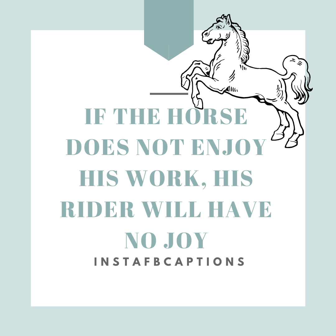 Ride Till I Die Horse Riding Captions   - Brown and White Black Lives Matter Instagram Post 6 - 96 Horse Riding Instagram Captions for Pictures with Horse in 2021