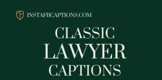 Classic Lawyer Captions For Lawyers And Law Students
