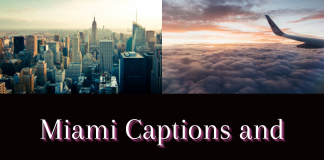 Miami Captions And Quotes