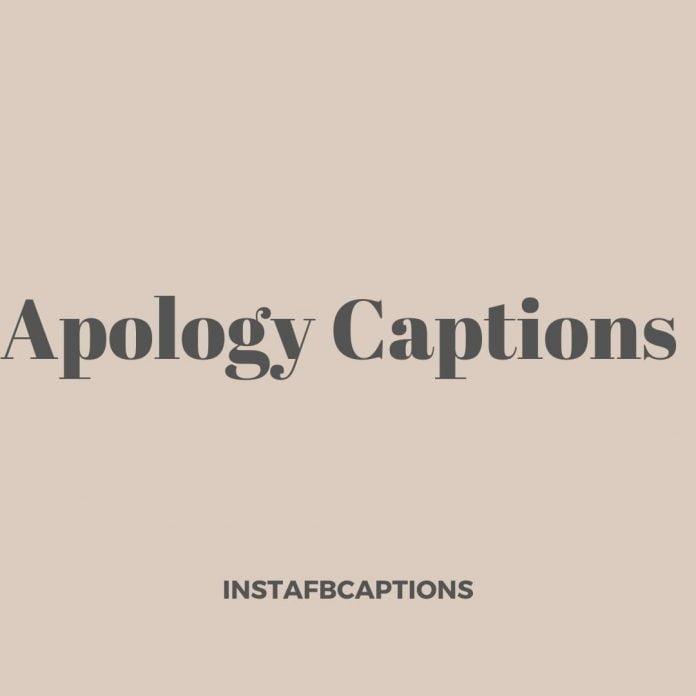 Apology Captions