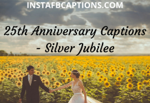 25th Anniversary Captions Silver Jubilee