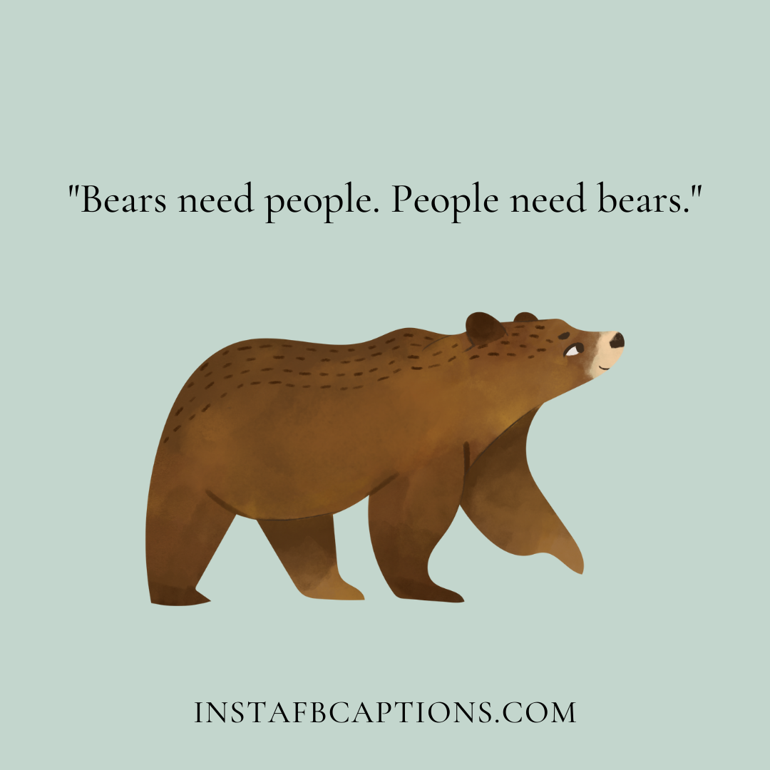 Bear Instagram Quotes  - Bear Instagram quotes - Cute BEAR Quotes for Teddy, Yogu and Mama in 2021