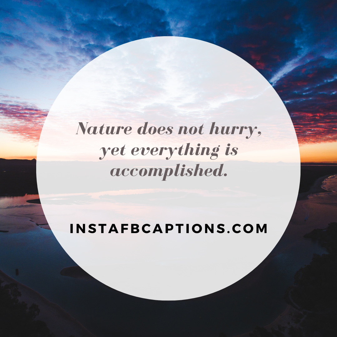 Quotes On The Mesmerising Beauty Of Nature  - Quotes On The Mesmerising Beauty Of Nature - Nature Quotes on Greenery and Beauty in 2021