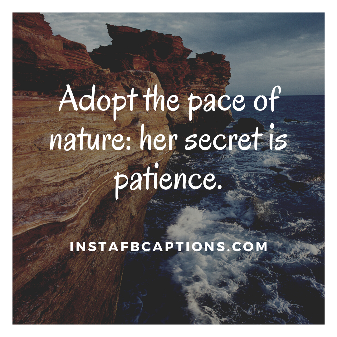 Short Quotes On Nature  - Short Quotes On Nature - Nature Quotes on Greenery and Beauty in 2021