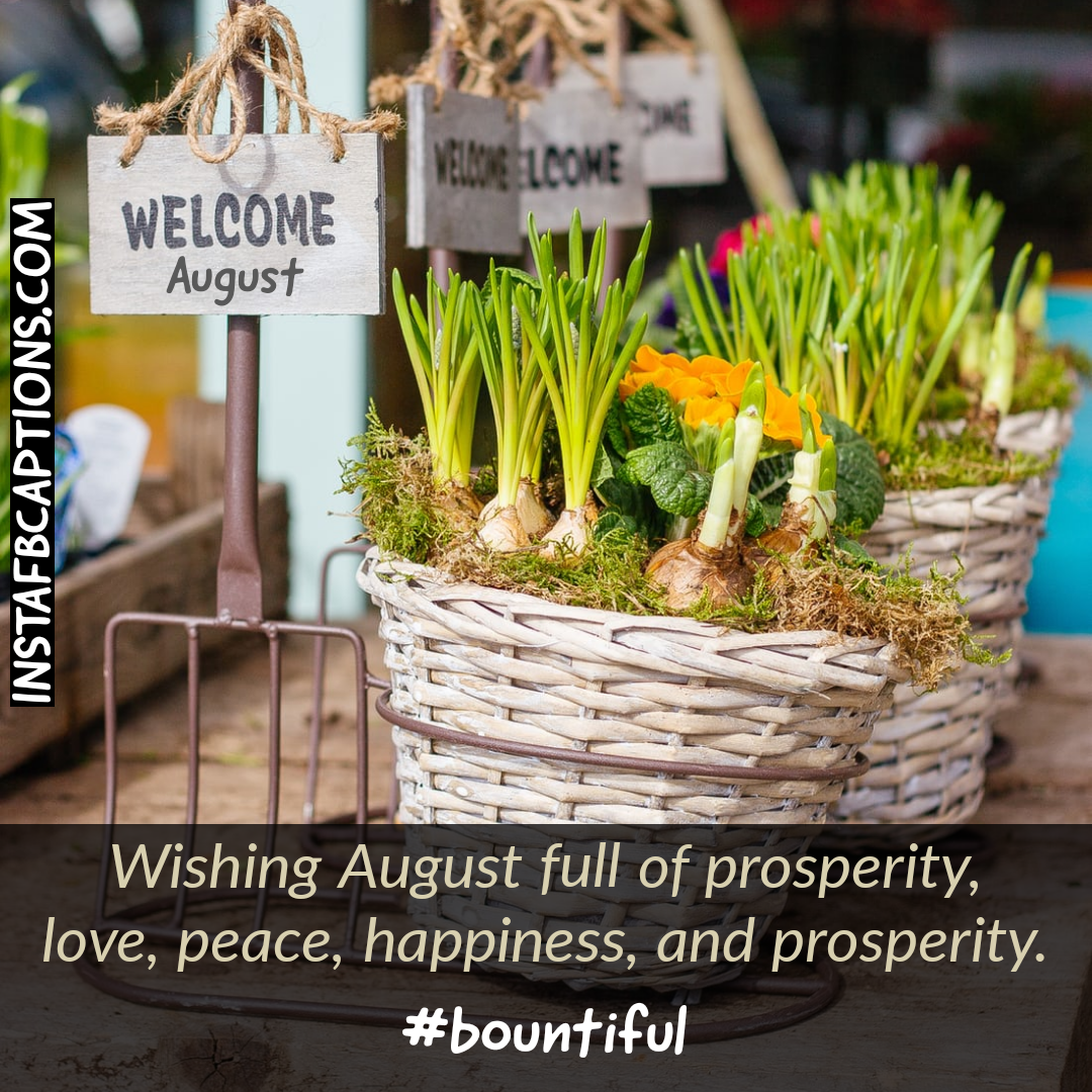 Welcome August Quotes And Captions  - Welcome August Quotes and Captions - AUGUST Instagram Captions & Quotes in 2021
