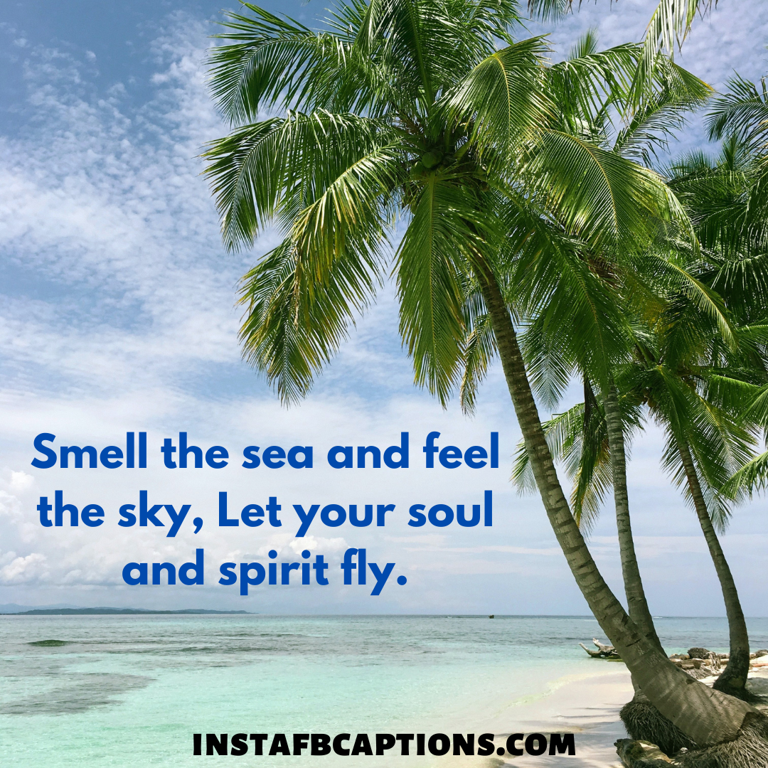 Short Sky Quotes  - short sky quotes - Beautiful SKY Quotes for Red and Blue Sky Pictures in 2021